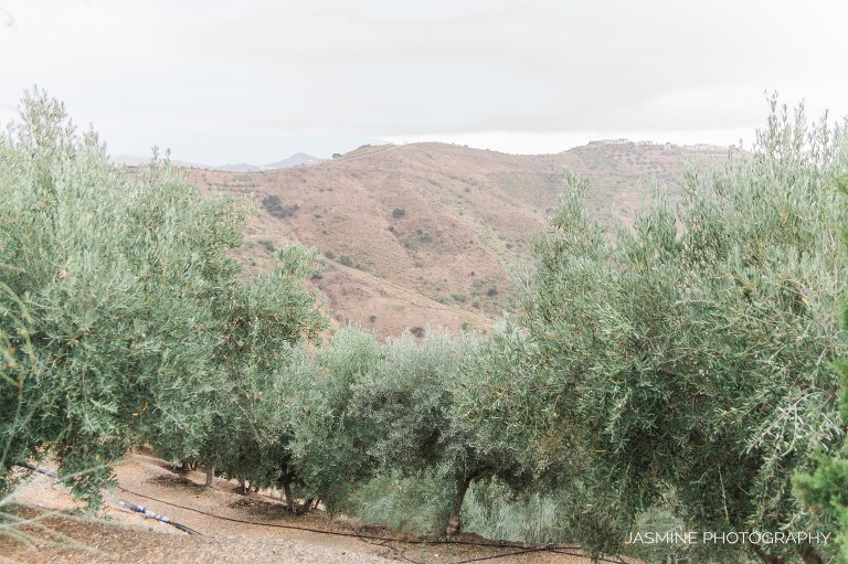 """""""Andalusia elopement"""""""